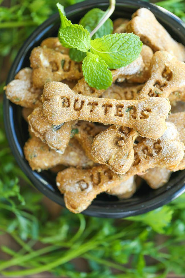 Mint Dog Treats for Fresh Doggy Breath