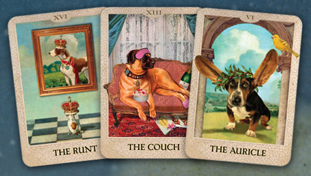 gifts-dog-tarow