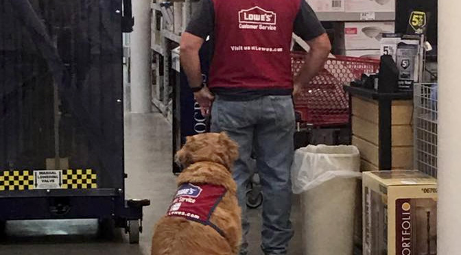lowes-hires-disabled-vet-and-his-service-dog