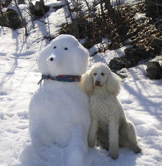 9 Dog Snowmen That Will Definitely Impress The Neighbors