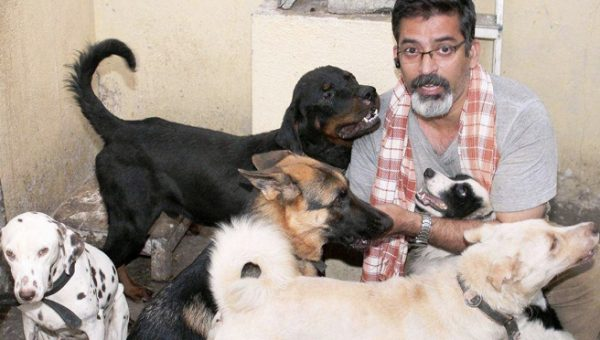 Adopting Stray Dogs In India