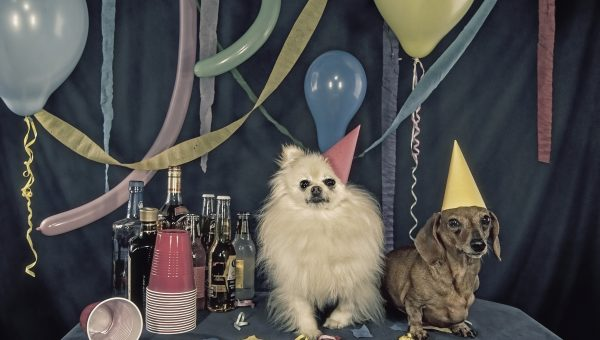 17 Actually Achievable New Year's Resolutions for You and Your Dog