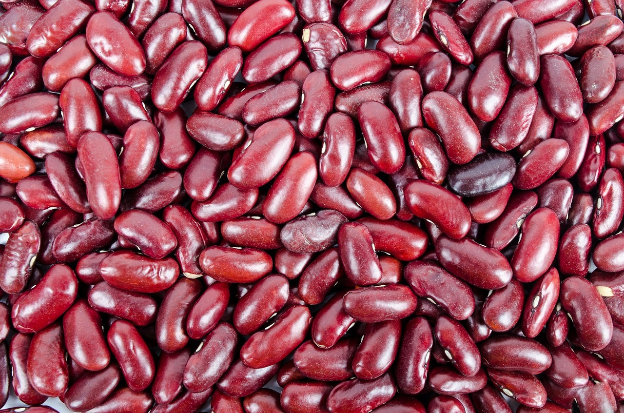 Can Dogs Eat Kidney Beans? | The Dog People by Rover com