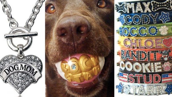 8 Blinged Out Accessories For Dog Lovers Who Need to Shine