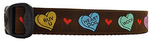 conversation hearts dog collar