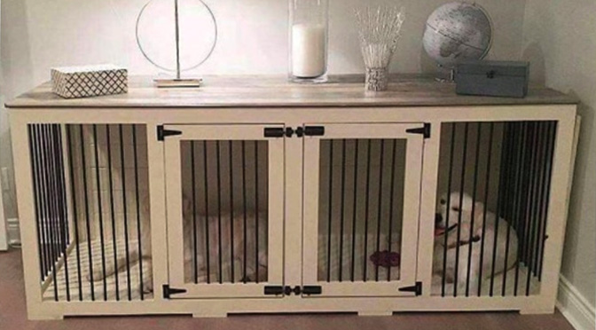 13 Unbelievably Cool Dog Crate Hacks Rover Com