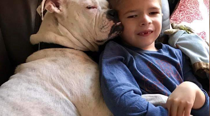 deaf-dog-and-non-verbal-boy-are-best-friends
