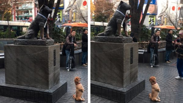 Sweet Photo of Puppy Posing with Famous Dog Statue is Making Everybody Cry