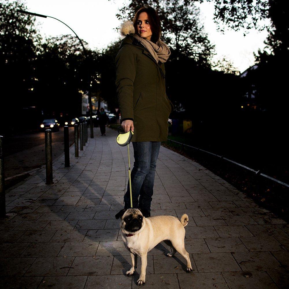 retractable 16 foot dog leash