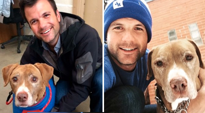 senior dog with cancer adopted by handsome guy