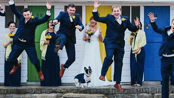 Frenchie Steals the Show at Parents' Wedding