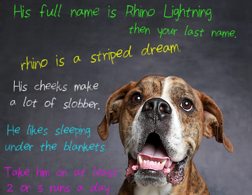 rhino lightning humane society of utah