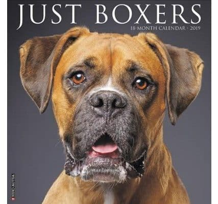 Just Boxers Calendar from Target.com
