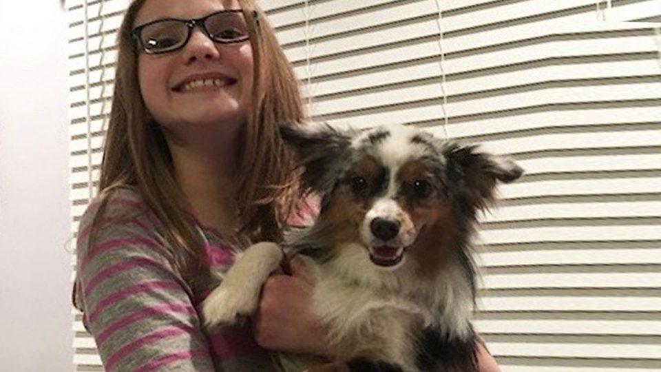 Celiac Disease And Service Dogs