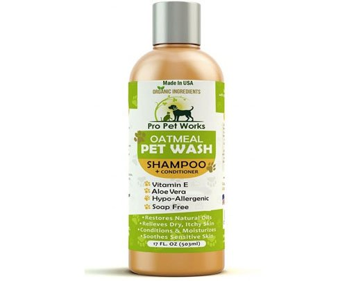 dog allergies treatments with gentle shampoo