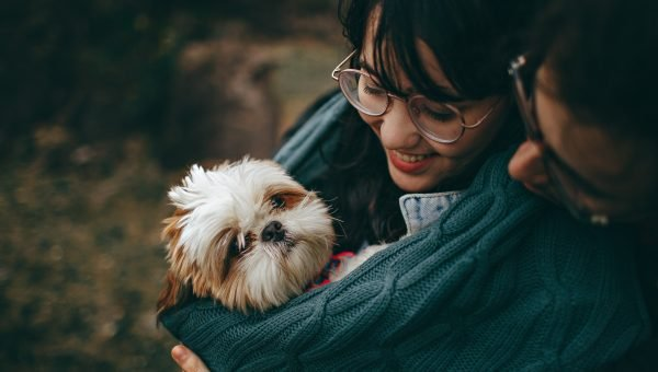 How Do Dogs Choose Their Favourite Person?