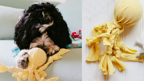 Easy DIY Dog Toy: The Octopus
