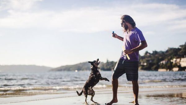 7 Perfect Activities to Kick off Summer with Your Dog