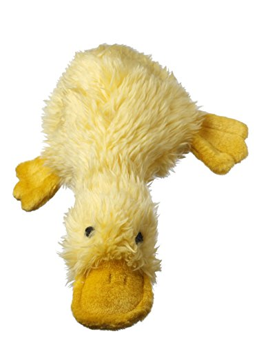 Best Small Dog Toys : Best plush dog toys that your won t destroy