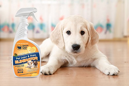 Smiling Paws Pets Enzyme Free Pet Stain Odor Eliminator