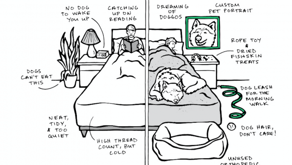 Life With a Dog vs. Life Without a Dog in 4 Illustrations