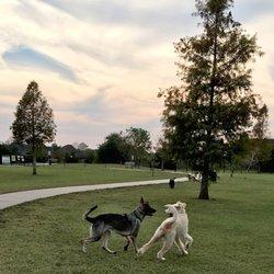 Top 7 Dog Parks in Baton Rouge, LA