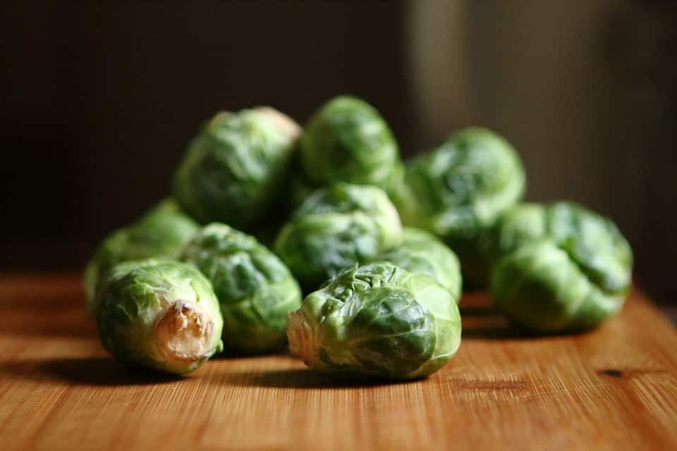 Brussels sprouts are a vegetable dogs can eat.