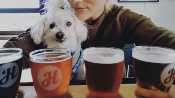 Top 6 Toronto Restaurants with Dog-Friendly Patios