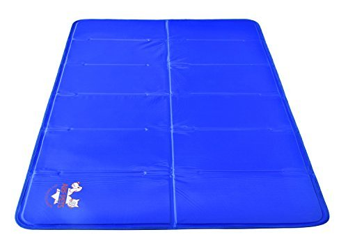 7 Best Cooling Beds For Your Hot Dog The Dog People By