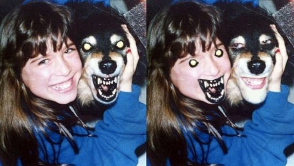 10 Dog Face Swaps That Will Totally Break Your Brain (And 1 Weird Cat)