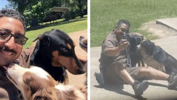 Chill UPS Guy Takes Time to Snuggle and Selfie with Neighborhood Dogs [Video]
