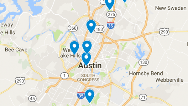 Top 7 Dog Parks in Austin, TX
