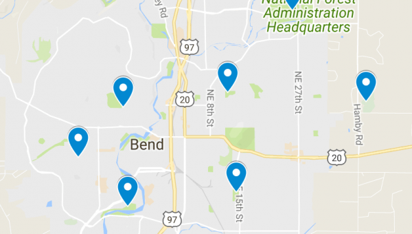 Top 7 Dog Parks in Bend, Oregon
