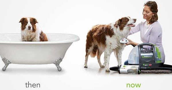 Prime Day's Hottest Pet Deal is This Crazy-Cool Portable Dog Bath
