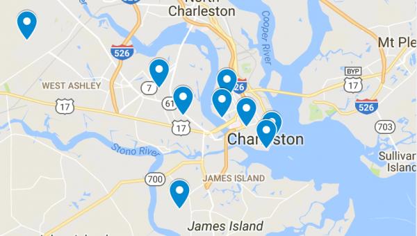 Top 9 Dog Parks in Charleston, South Carolina