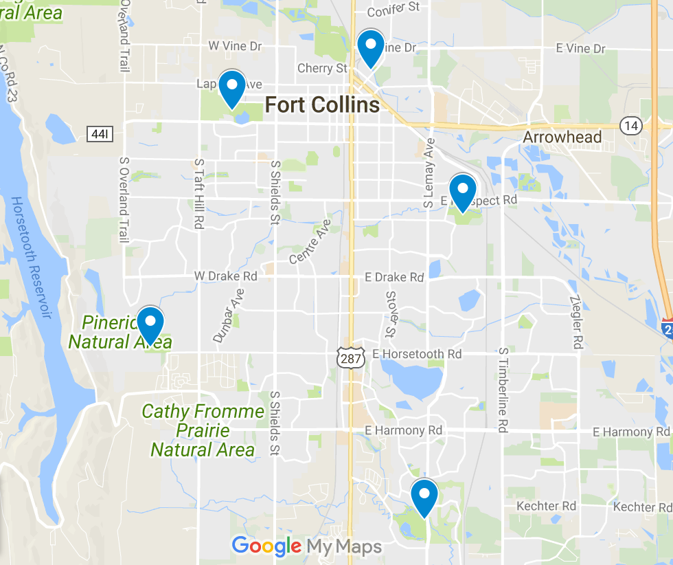 Top 6 Dog Parks in Fort Collins Colorado Rovercom