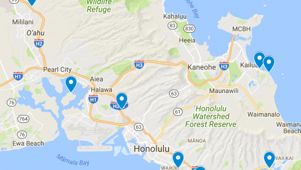 Top 8 Dog Parks in Oahu