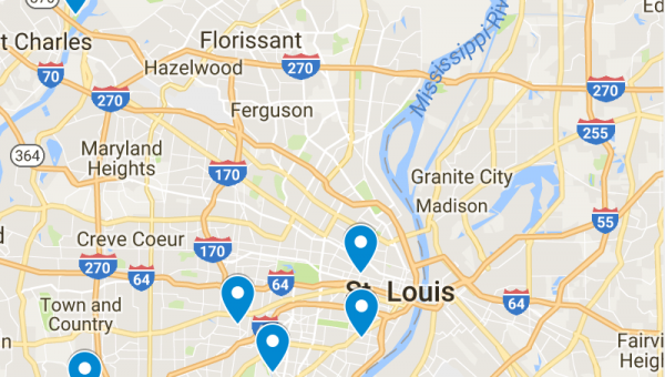 Top 6 Dog Parks in St. Louis