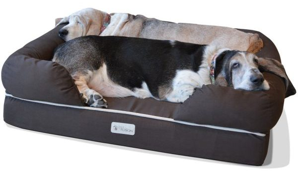 ultimate pet bed and lounge for dogs