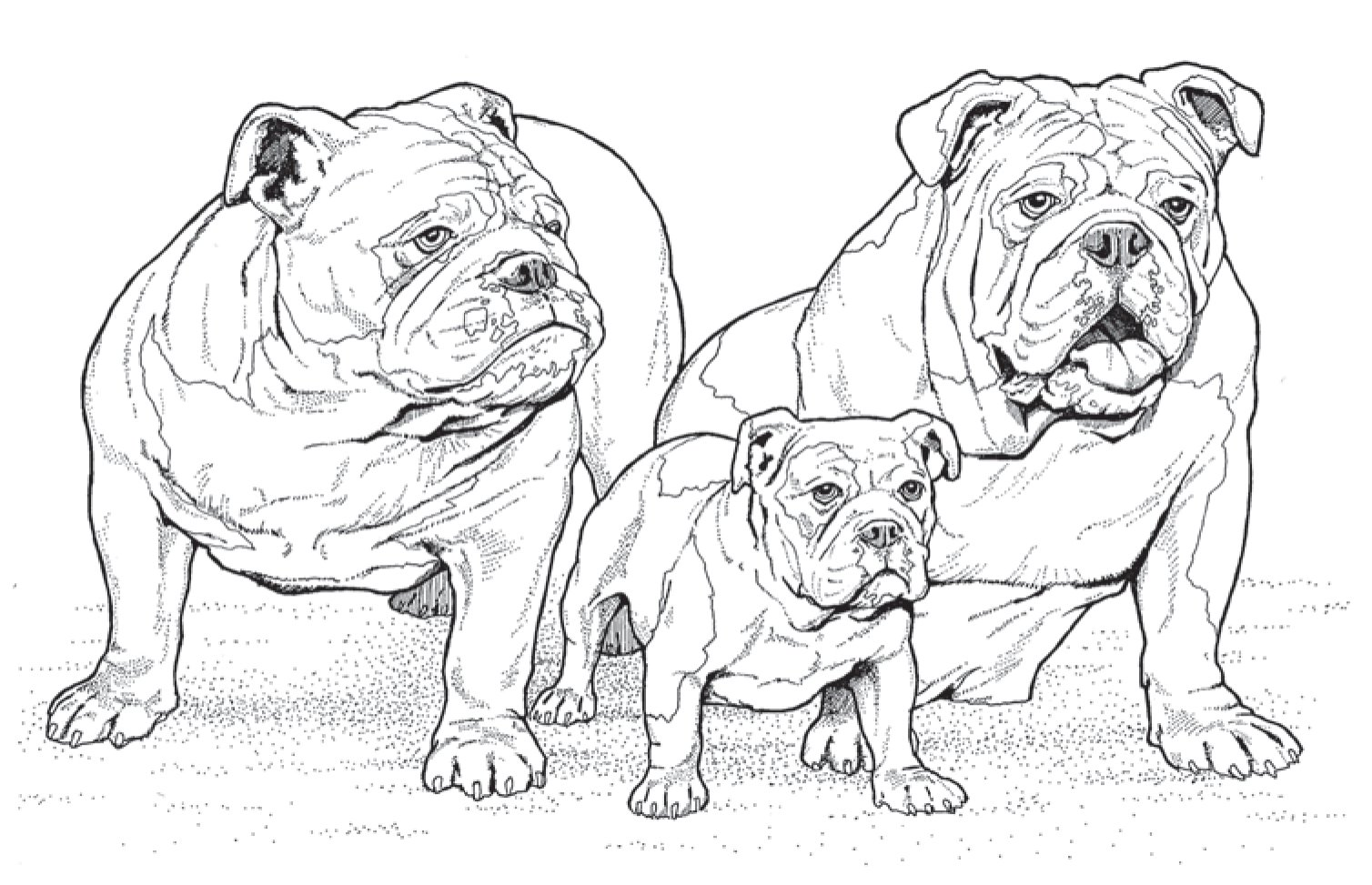 10 new coloring books for dog lovers to help get your chill