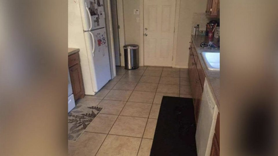 Can You Spot The Dog Hidden In This Kitchen