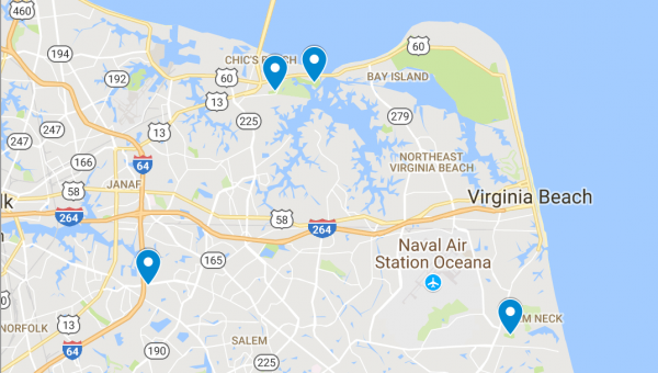 Top 4 Dog Parks in Virginia Beach