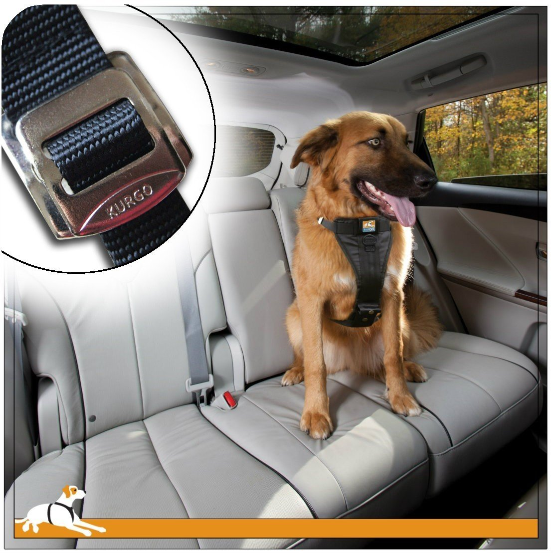 Dog in car wearing Kurgo Tru-fit