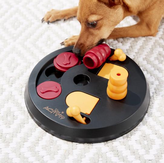 chien en train de jouer avec un puzzle pour chien trixie