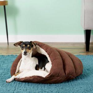 Ethical Pet Sleep Zone Cuddle Cave cozy dog bed