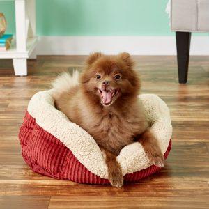 Aspen Pet self-warming cozy dog bed