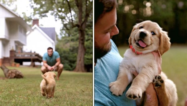 This Guy is Honestly So in Love with His New Puppy and It's A Beautiful Thing