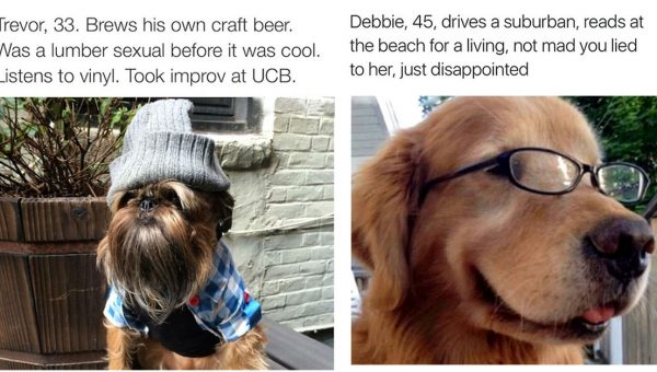 These Excellent Dog Bios Are So On-Point You Can't Help but Laugh