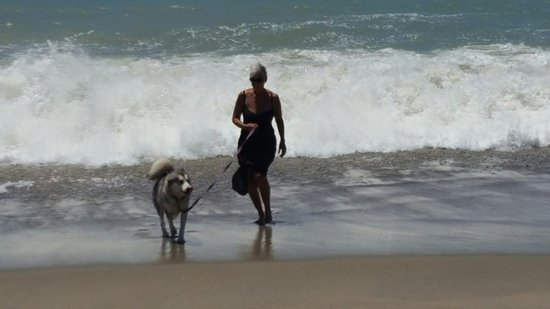 Top Dog Beach at Leo Carrillo State Park