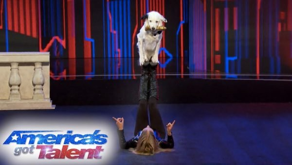 Incredible Dog Training Team Going to the 'America's Got Talent' Finals